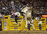 Three Hills Rodeo